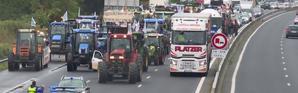 Les agriculteurs se donnent rendez-vous le 27 novembre à Paris