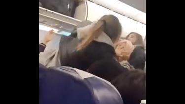 La pelea fue filmada en el avión por pasajeros aturdidos.