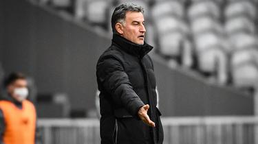 Christophe Galtier a reçu 31 roses de la part d'un supporter de Lille.