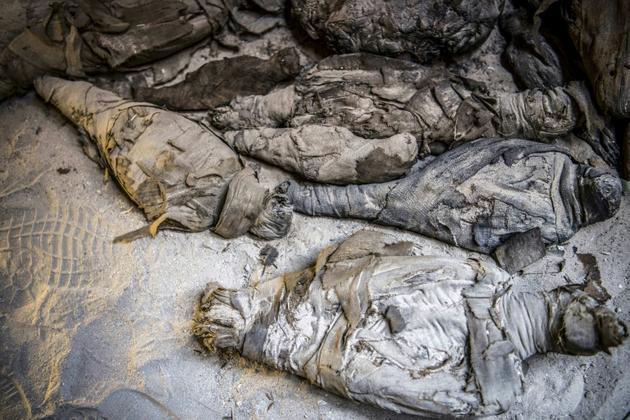 Des momies d'animaux découvertes dans une tombe datant de l'ère ptolémaïque, le 5 avril 2019 à Al-Diabat, près de la ville d'Akhmin, en Eqypte [Khaled DESOUKI / AFP]