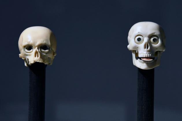 L'étonnante collection de crânes miniatures rassemblés au début du XXe siècle par la baronne Henri de Rothschild présentée à la fondation Bemberg, à Toulouse le 29 juin 2018  [PASCAL PAVANI / AFP]