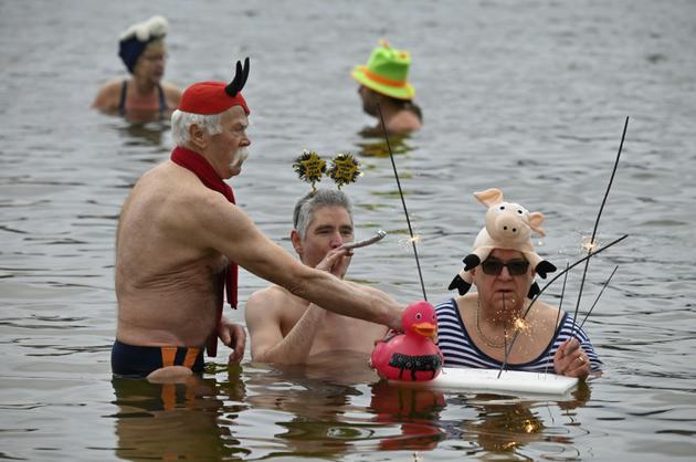 """Les """"Phoques de Berlin"""" barbotent dans le lac d'Oranke à Berlin, le 1er janvier 2019 [Tobias SCHWARZ / AFP]"""
