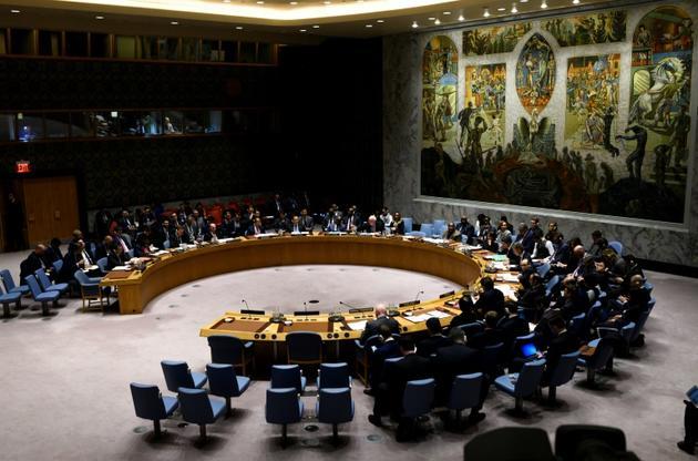 Réunion du Conseil de sécurité de l'ONU, le 26 février 2019 à New York [Johannes EISELE / AFP/Archives]