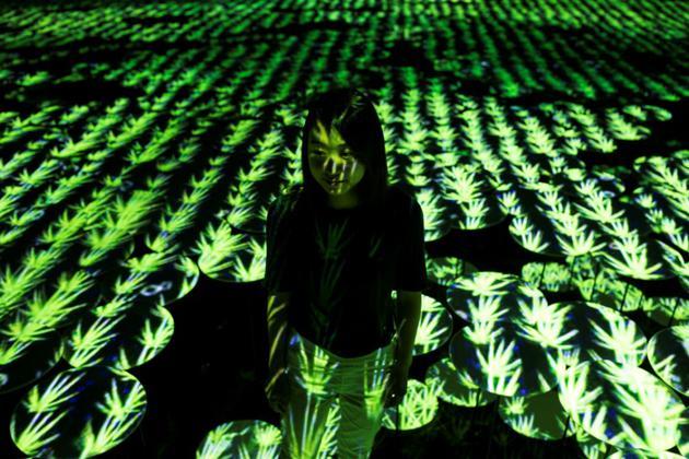 Une membre du collectif japonais teamLab au milieu d'une rizière, le 1er mai 2018 au Mori Building Digital Art Museum à Tokyo [Behrouz MEHRI / AFP]