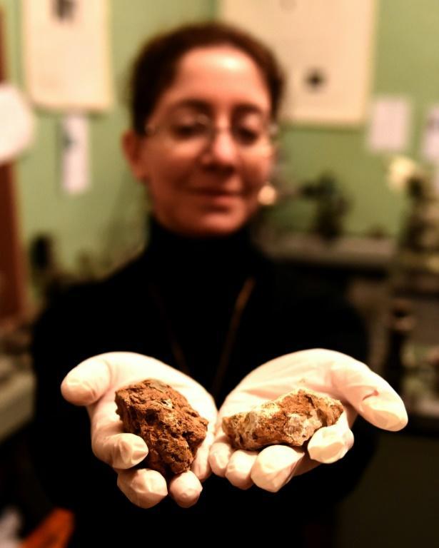 Marika Tarasachvili, une astro-biologiste travaillant à un projet de développement de vigne sur Mars, le 26 février 2019 à Tbilissi [Vano SHLAMOV / AFP]