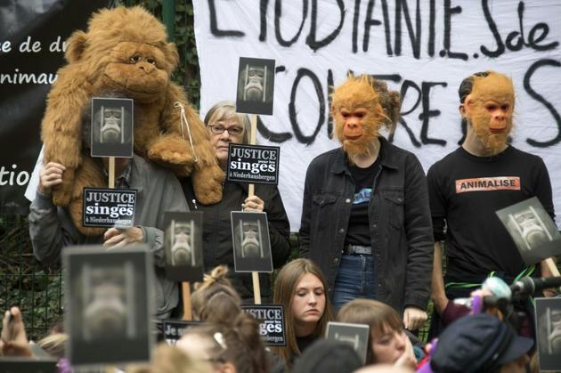 Manifestation à proximité de Strasbourg pour réclamer la fermeture d'un centre universitaire de primatologie, qui réalise des études sur des singes, le 20 octobre 2019   [FREDERICK FLORIN / AFP]