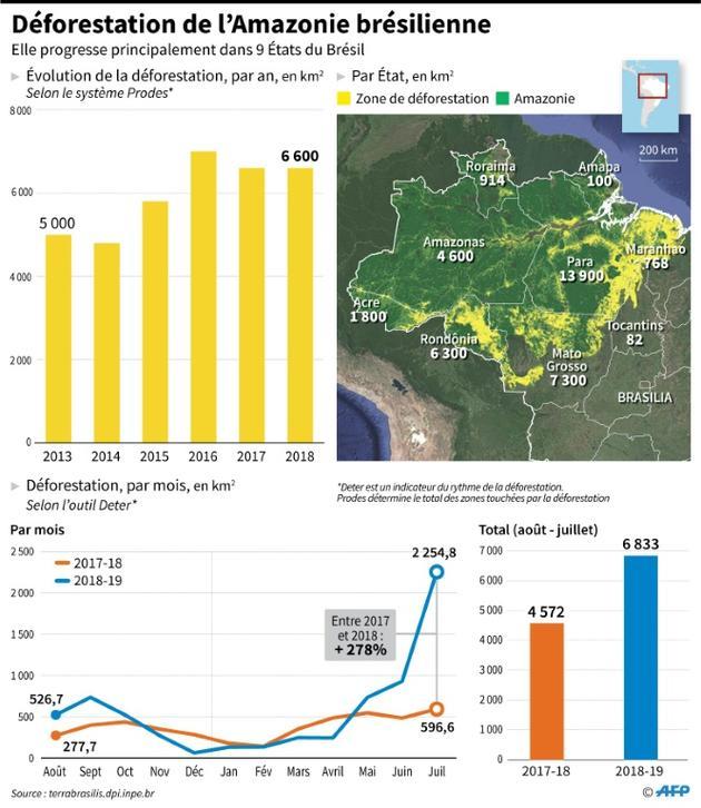 Déforestation de l'Amazonie brésilienne [María SCARPINELLI / AFP]