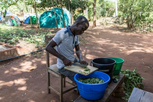 """Tanguy Kponton, un formateur, prépare une soupe à un """"agro-bootcamp"""", camp de formation à l'agro-écologie, le 16 avril 2019 à Tori-Bossito, au Bénin [Yanick Folly / AFP]"""