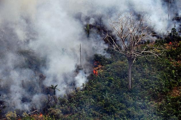 Vue aérienne d'un incendie dans la forêt amazonienne, à environ 65 kilomètres de Porto Velho, dans l'Etat brésilien de Rondonia, le 23 août 2019 [CARL DE SOUZA / AFP]