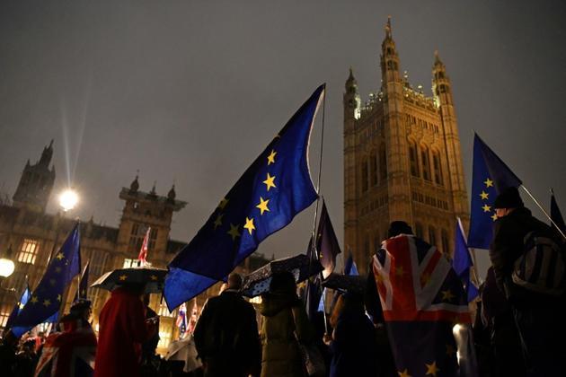 Des opposants au Brexit manifestent à Londres le 29 janvier 2019 [Ben STANSALL / AFP]