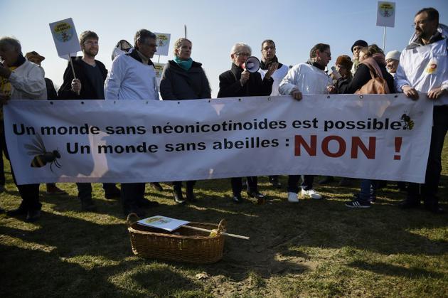 Rassemblement écologiste à Paris, le 15 mars 2016 [LIONEL BONAVENTURE / AFP/Archives]