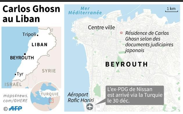 Carlos Ghosn au Liban  [Gal ROMA / AFP/Archives]