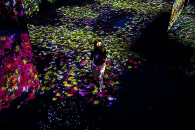 Une membre du collectif japonais teamLab au milieu d'un paysage de fleurs lumineuses, le 1er mai 2018 au Mori Building Digital Art Museum à Tokyo [Behrouz MEHRI / AFP]