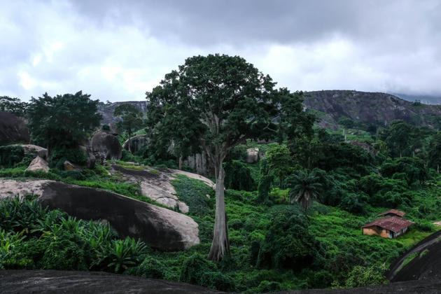 Une vue générale de la végétation sur les collines d'Idanre au Nigéria, le 25 août 2018 [Florian PLAUCHEUR / AFP]