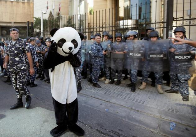 Un Libanais déguisé en panda manifeste devant le palais de justice à Beyrouth le 12 novembre 2019  [ANWAR AMRO / AFP]