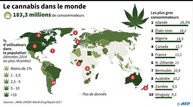 Le cannabis dans le monde [John SAEKI, Laurence CHU / AFP]