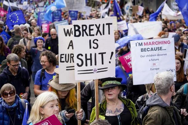 Manifestation d'ampleur près du Parlement à Londres pour réclamer un nouveau référendum sur le Brexit, le 19 octobre 2019 [Niklas HALLE'N / AFP]