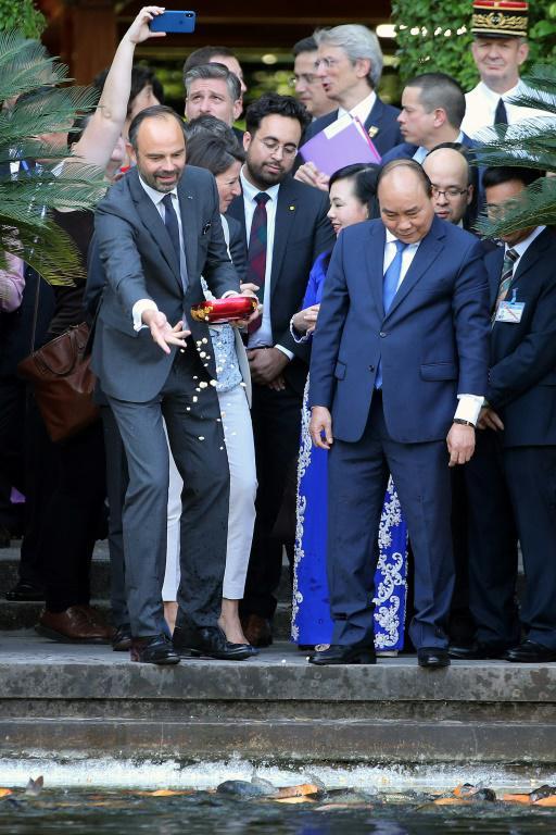 Le Premier ministre français Edouard Philippe (à gauche) aux côtés de son homologue vietnamien Nguyen Xuan Phuc, dans le palais présidentiel de Hanoï, le 2 novembre 2018 [Minh HOANG / POOL/AFP]
