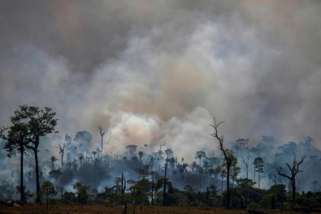 Des fumées s'élèvent de la forêt amazonienne près d'Altamira (nord du Brésil), le 27 août 2019 [Joao Laet / AFP]