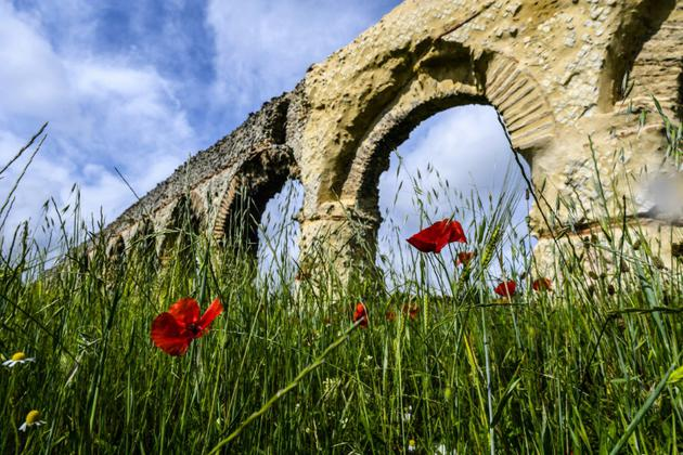 L'acqueduc romain du Gier près de Chaponost  [PHILIPPE DESMAZES / AFP]