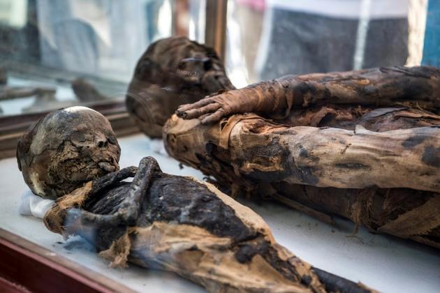 Des momies découvertes dans une tombe datant de l'ère ptolémaïque, le 5 avril 2019 à Al-Diabat, près de la ville d'Akhmin, en Egypte [Khaled DESOUKI / AFP]