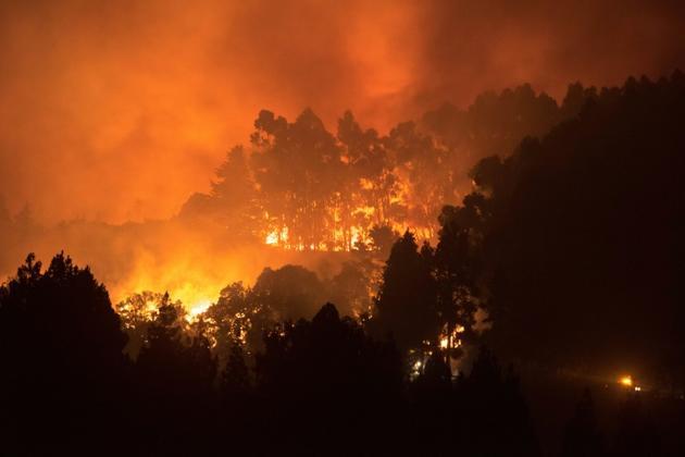 Dernier incendie en date sur l'île espagnole de Grande Canarie, le 17 août 2019 [DESIREE MARTIN / AFP]