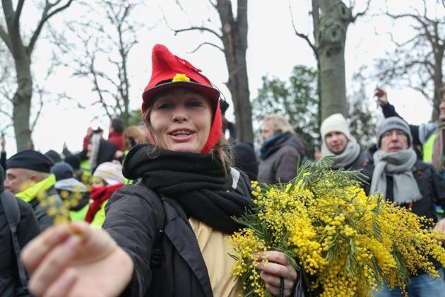 """Une manifestante """"gilet jaune"""" offre des brins de mimosa, samedi 19 janvier 2019 à Paris [Zakaria ABDELKAFI / AFP]"""