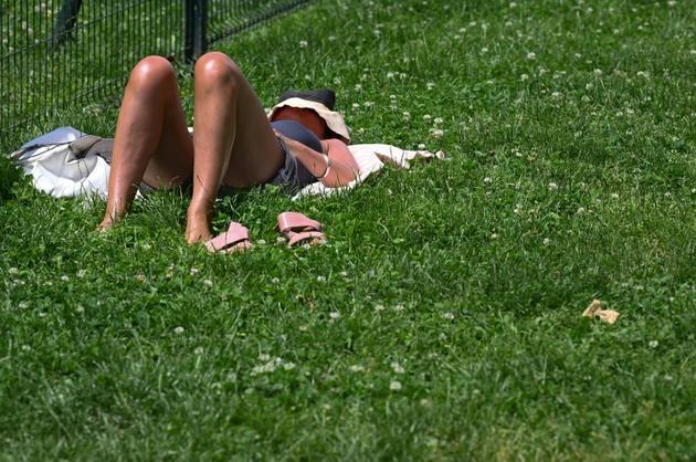 Une femme prend un bain de soleil sur une pelouse à Lyon, le 24 juin 2019 [PHILIPPE DESMAZES / AFP]