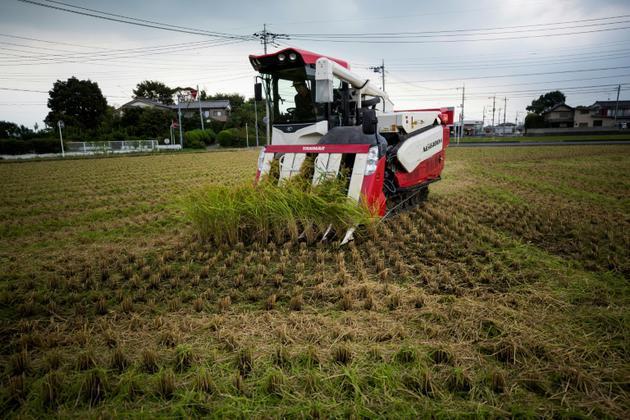 Yuichi Ogura aux commandes de son tracteur pour la récolte de riz à Kazo, au Japon, le 31 août 2018 [Behrouz MEHRI / AFP]