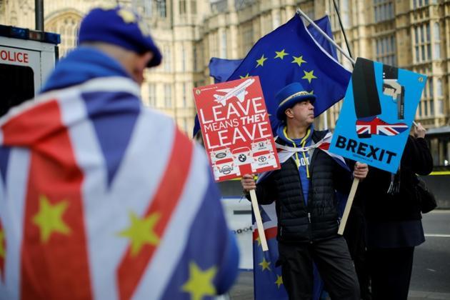 Des manifestants anti-Brexit devant le Parlement britannique à Londres, le 12 février 2019 [Tolga AKMEN / AFP]