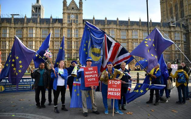 Des manifestants pro-UE réclament un second référendum pour empêcher le Brexit, le 14 novembre 2018 devant le Parlement britannique à Londres [Ben STANSALL / AFP]