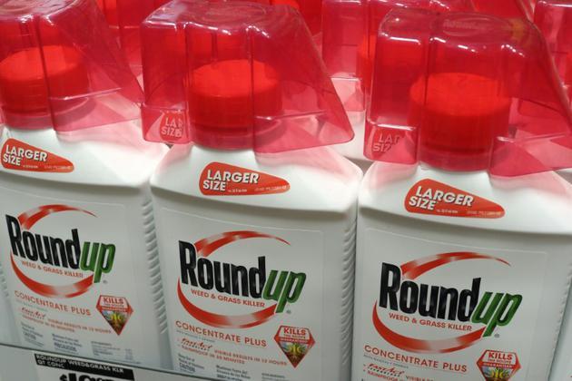 Des bouteilles de Roundup, le désherbant au glyphosate, photographiées à Glendale, en Californie, le 19 juin 2018    [Robyn Beck / AFP/Archives]