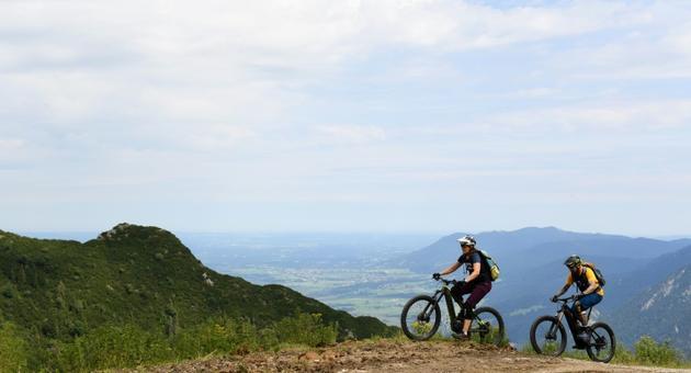 Ursula et Robert Werner terminent l'ascension du mont Herzogstand dans les Alpes bavaroises, le 5 août 2019 [Christof STACHE / AFP/Archives]