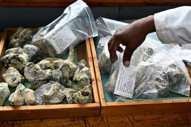 Des fossiles prêts à être entreposés au musée national de Nairobi, le 23 mai 2019 au Kenya [SIMON MAINA / AFP]