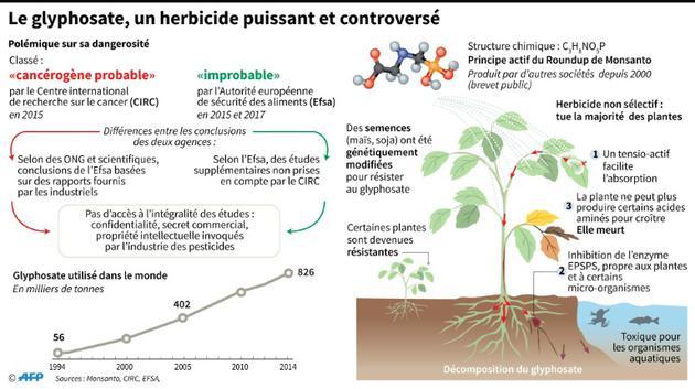 Le glyphosate [Alain BOMMENEL, Laurence SAUBADU, Kun TIAN / AFP]