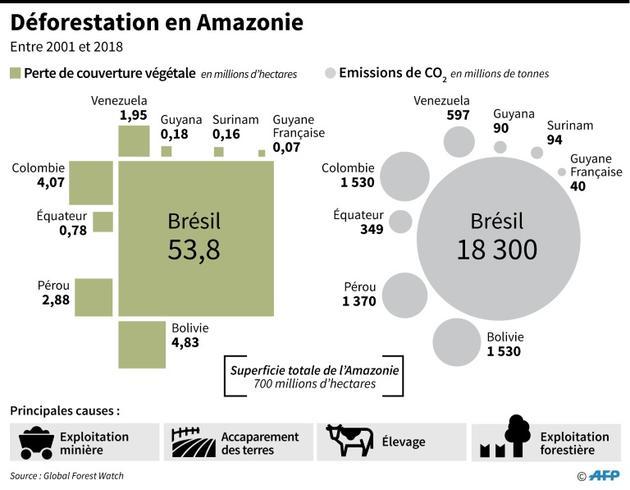 Déforestation en Amazonie [Nicolas RAMALLO / AFP]
