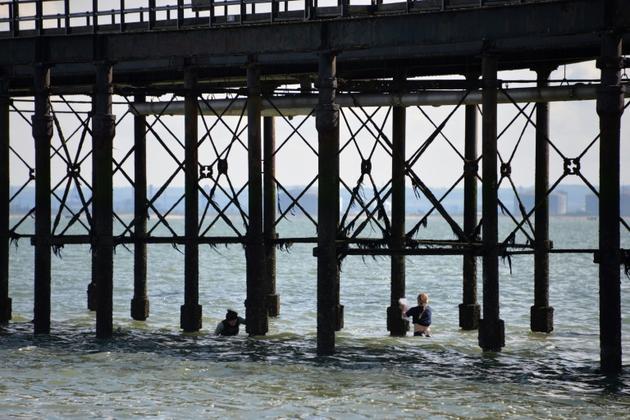 Des scientifiques prélèvent des moules dans le cadre d'une mission de recherches sur les microplastiques, le 11 juin 2018 près de Londres [Amélie BOTTOLLIER-DEPOIS / AFP]