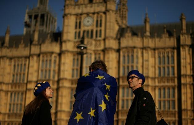 Des manifestants devant le Parlement britannique, le 26 février 2019 à Londres [Daniel LEAL-OLIVAS / AFP]