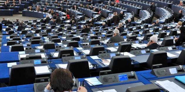 Le rapport Lunacek adopté au Parlement européen