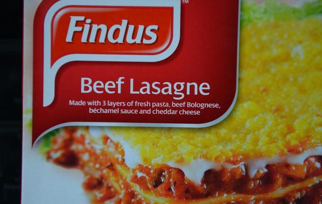 Des Lasagnes Findus vendue en Grande-Bretagne [Andrew Yates / AFP/Archives]