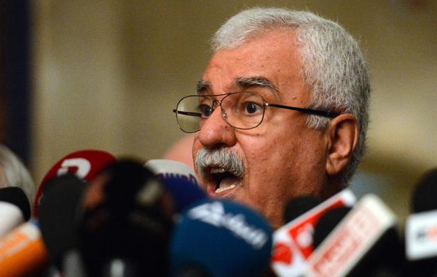 George Sabra le 24 février 2013 au Caire [Khaled Desouki / AFP/Archives]
