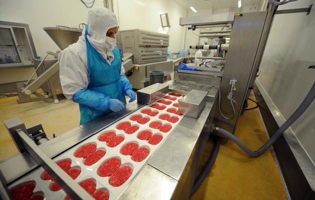 Un technicien travaille sur une chaîne de production de steaks hachés, le 23 juin 2011, à l'entreprise Spanghero de Castelnaudary [Remy Gabalda / AFP/Archives]