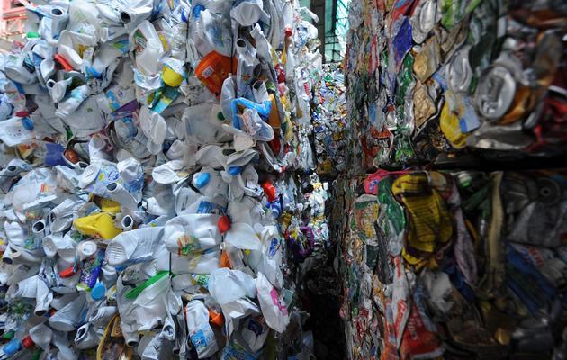Un centre de recyclage en France [Jean Francois Monier / AFP/Archives]
