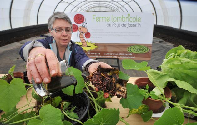 Gwénola Picard cofondatrice de la ferme lombricole près de Josselin (Bretagne), le 2 mai 2013 [Frank Perry / AFP]
