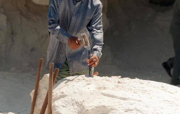Nelson Mandela de retour le 10 février 1995, après sa libération, sur l'île-prison de Robben Island où il a passé 19 ans de détention [Guy Tillim / AFP/Archives]