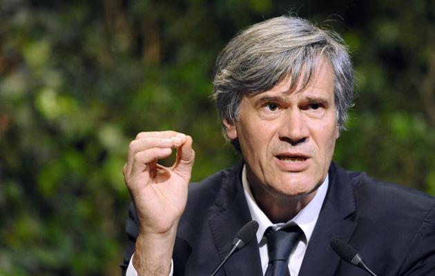 Le ministre de l'Agriculture Stéphane Le Foll le 6 juin 2013 à Metz [Jean-Christophe Verhaegen / AFP/Archives]