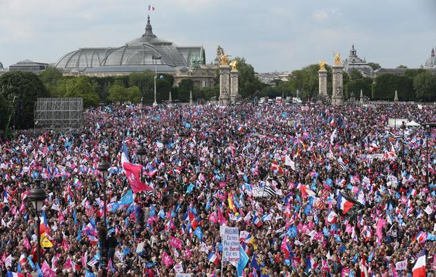 Une vue de l'Esplanade des Invalides lors de la manifestation contre le mariage homosexuel, le 26 mai 2013 à Paris [Thomas Samson / AFP/Archives]