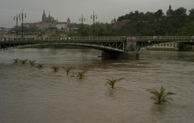 La rivière Vltava à Prague, le 2 juin 2013 [Michal Cizek / AFP]