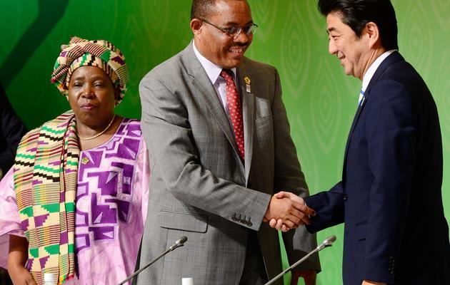 Le Premier ministre japonais Shinzo Abe (d) salue son homologue éthiopien Hailemariam Desalegn, le 3 juin 2013 à Tokyo [Toru Yamanaka / Pool/AFP]