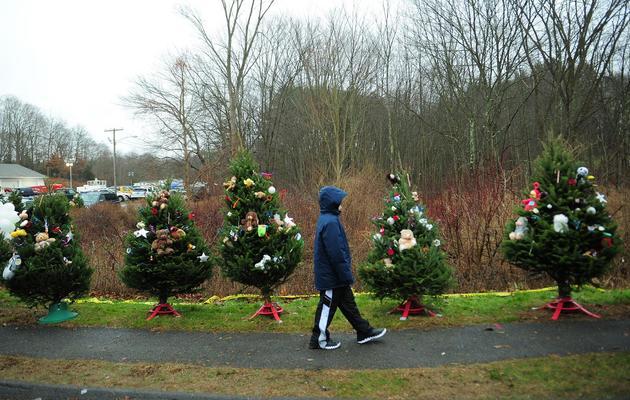 Un enfant passe devant des arbres de Noël en hommage aux victimes de la fusillade de Newton, le 16 décembre 2012 [Emmanuel Dunand / AFP]
